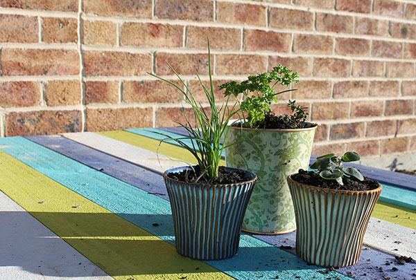 Herb-Gardening-10