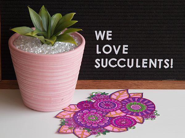 Succulent-Holder-1