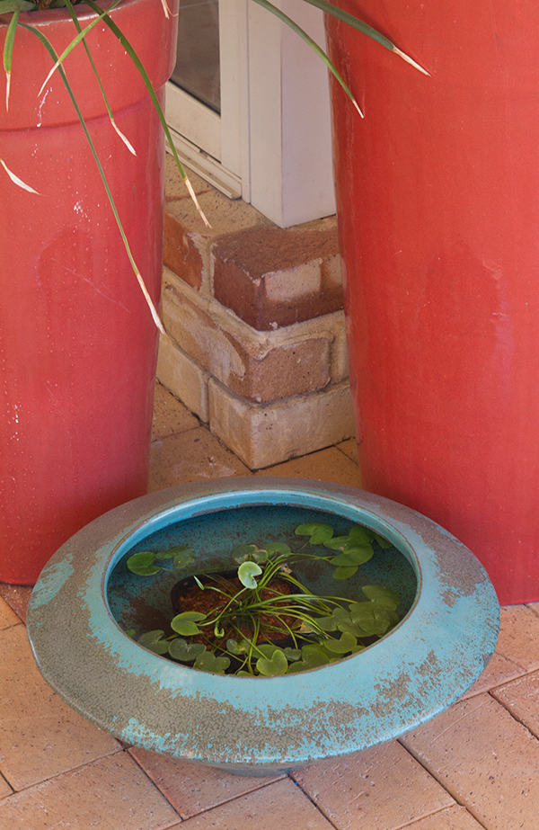 Pot-into-Water-Feature-5