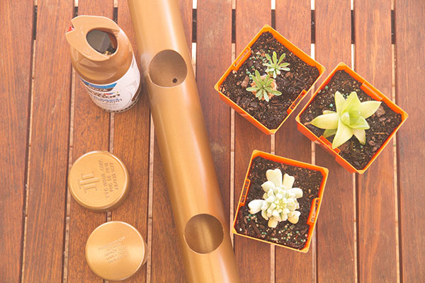 PVC-Pipe-Succulent-Planter-Tube-4