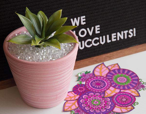 Succulent-Holder-3